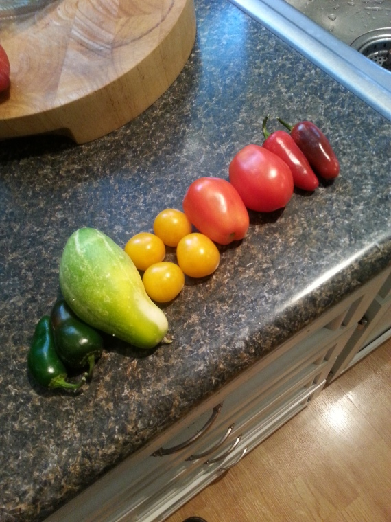 I realized today that with the yellow throw in there I had quite an assortment of colors on my counter.